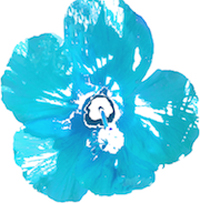 Image of a blue hyacinth flower to illustrate the Mahalo Program