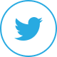 twitter icon for navigation